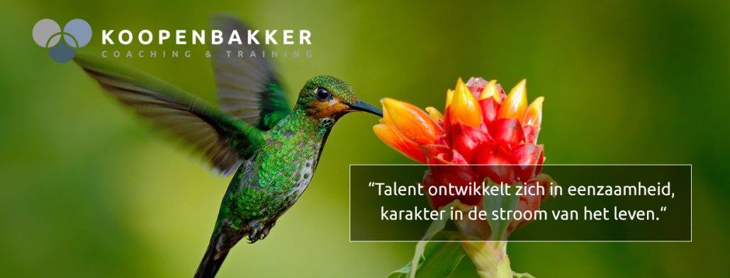 talenten vaardigheden capaciteiten - persoonlijk leiderschap