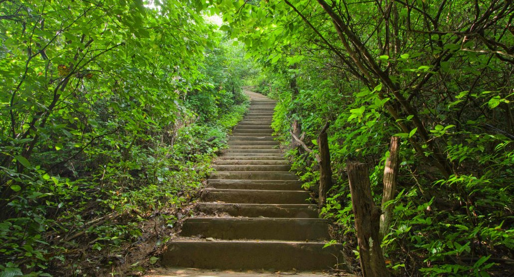 de volgende stap - coachingstraject - coaching