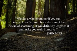 Documentaire - Mile... Mile & A Half - John Muir trail - wandelen