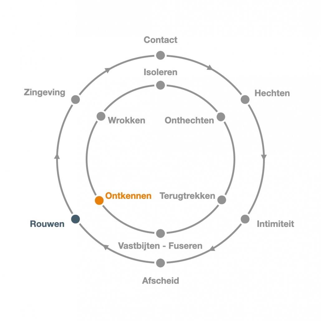 Rouwen - Ontkennen - Transitiecirkel