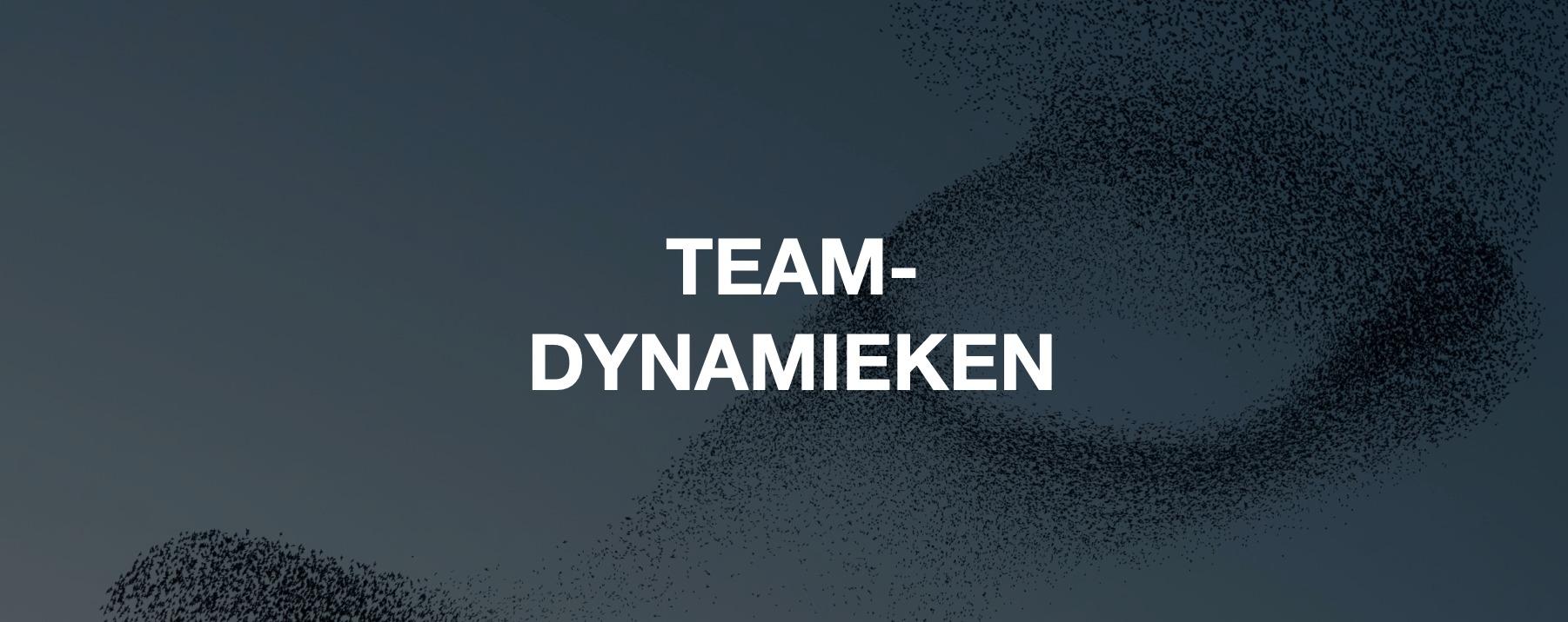 Zoektocht naar het perfecte team